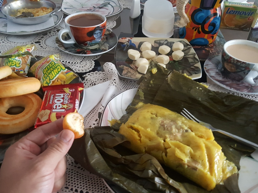 home food tamale travel in bogota colombia