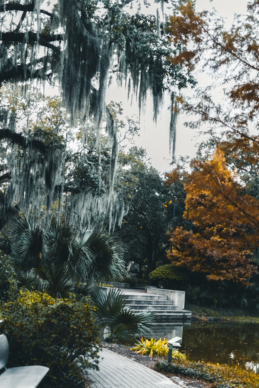 Sculpture garden things to do in New Orleans must visit fall winter look beautiful place